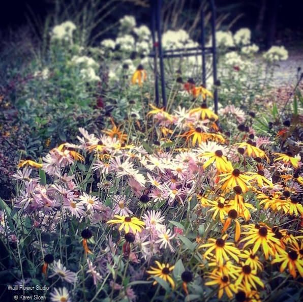 October garden perennials
