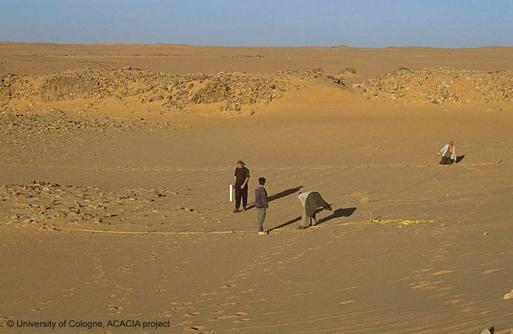 fortress Gala Abu Ahmed in lower Wadi Howar, Sudan http://www.fstafrika.phil-fak.uni-koeln.de/9263.html