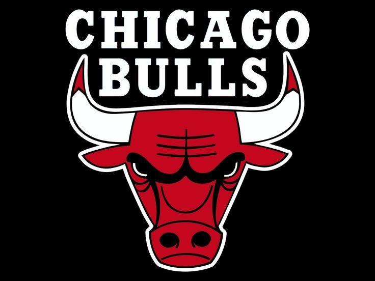 Chicago Bulls Logo http://www.nba.com/bulls/ http://pinterest.com/nbadraftboss