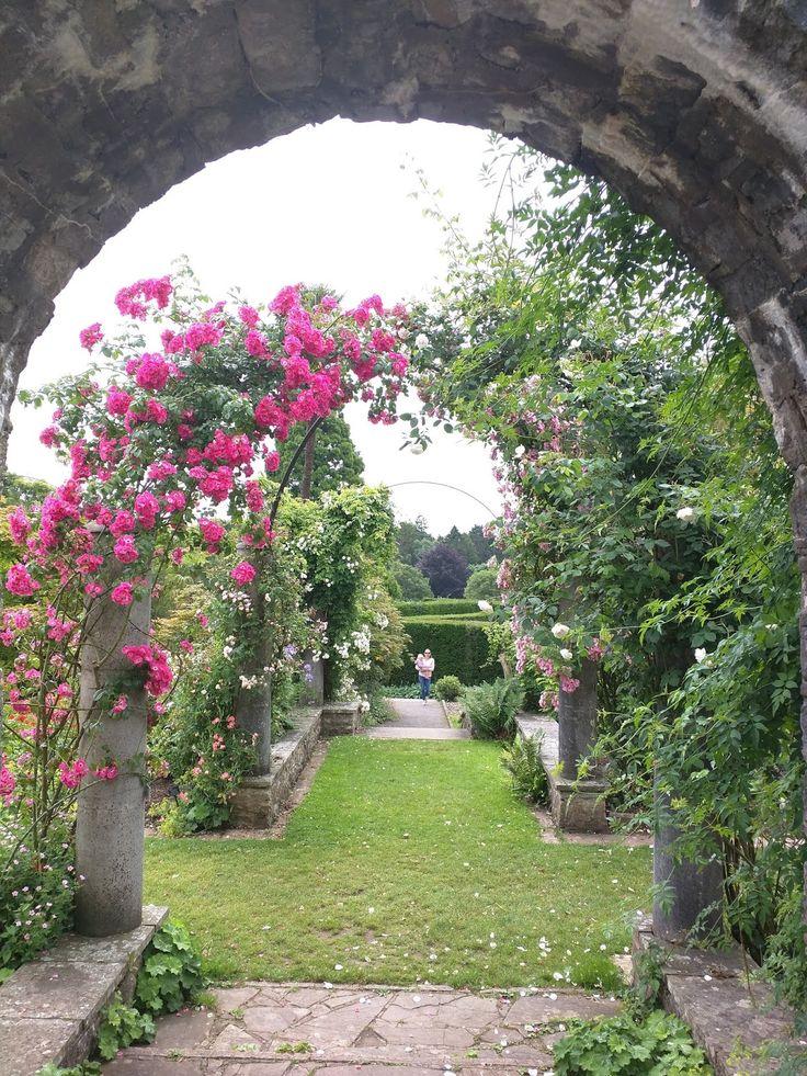The frenchy diaries: Journée de découverte proche de Cardiff : Dyffryn Garden
