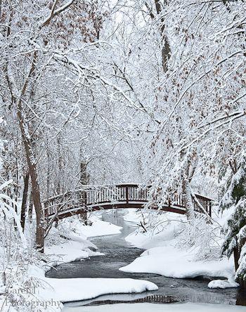 """""""Winter Beauty"""" by Garen Johnson"""