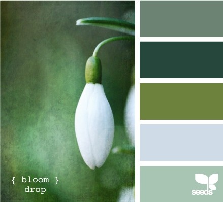 Verdes liiinndos...mais acinzentados...