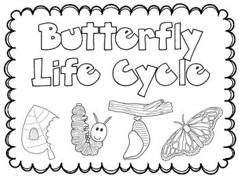 81 butterfly stages coloring page butterfly life cycle coloring page color the frog. Black Bedroom Furniture Sets. Home Design Ideas