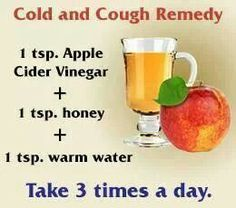 Diy cold & cough remedy - best for big people bc apple cider vinegar is rough