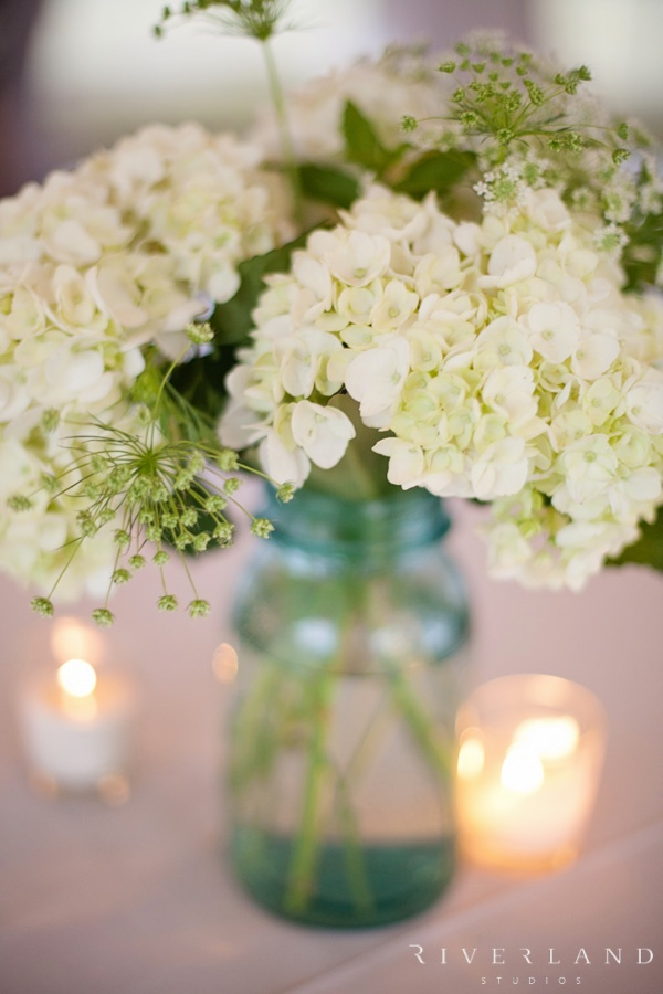 Best 25 Mason Jar Hydrangea Ideas On Pinterest Gold