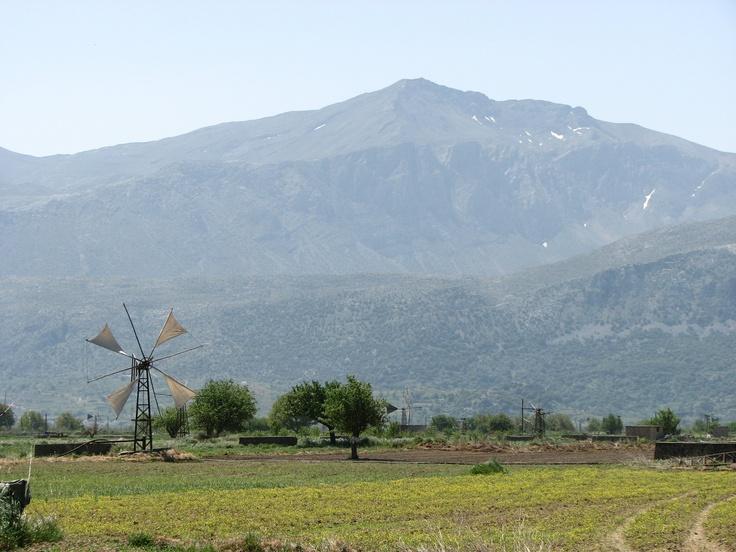 Lassithi ; Crete ; Greece