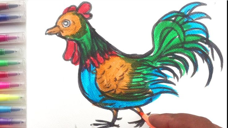 How To Draw Big Rooster Rainbow Color For Kids-Coloring Page And Paintin...