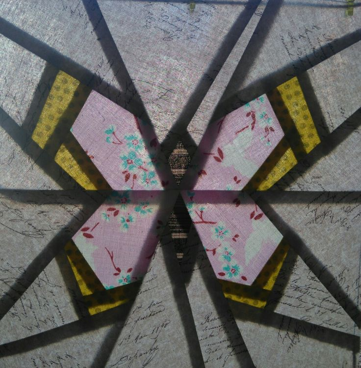 Perhonen A ikkunaa vasten kuvattuva. Toukokuu 2017.