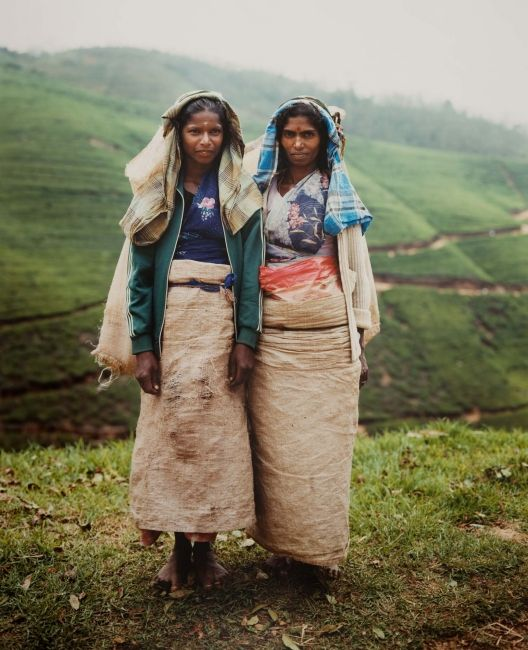 Rajaysuri, Indrani, Tea Pluckers, Westward Ho Estate, Nuware Eliya, Sri Lanka | Museum of Photographic Arts