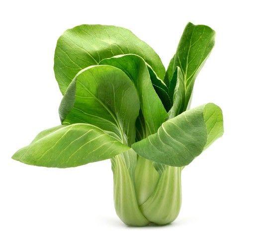 El Pak Choy, Pak-Choi, Paksoi o Bok Choy es una hortaliza pariente de la col, que a simple vista puede confundirse con la acelga. De hojas verdes y tronco blanquecino, el Pak Choy es una planta que no llega a superar el medio metro de altura. Si bien esta verdura se cultiva en países asiáticos com…