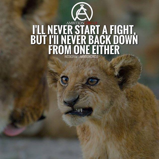Never back down from a fight. #success. #quotes #rich #wealth #prosperity #cash to achieve #passion #dreams #goals #entrepreneur. #Get your #6figures #income #secret http://wealthyguru.com