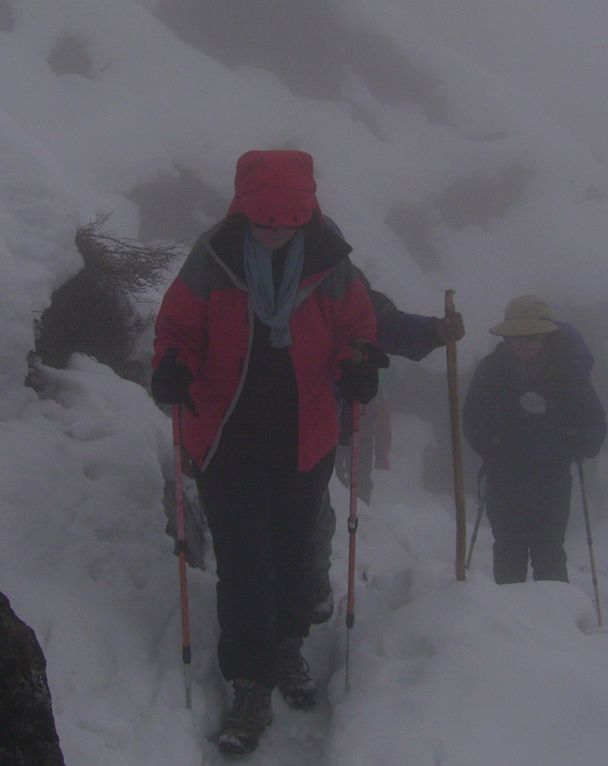 Trudging along in a blizzard