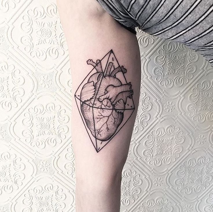 60 best Anatomical heart tattoo images on Pinterest | Anatomical ...