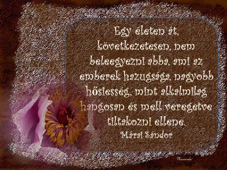 https://www.facebook.com/magyar.menedek.konyveshaz/photos/a.156728014364659.24327.141814862522641/456106971093427/?type=3&theater