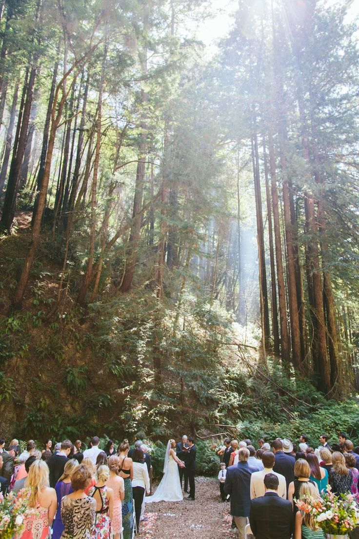Northern California Redwoods Wedding