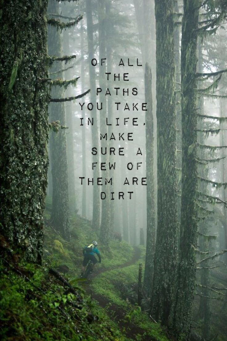 Best 25 mountain biking quotes ideas on pinterest bike for What do we use trees for