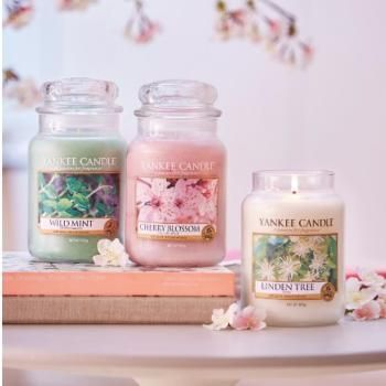 www.candlestore.fr Mobile
