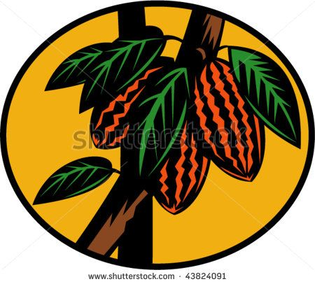 illustration of a cacao or cocoa fruit on tree  #cacao #woodcut #illustration