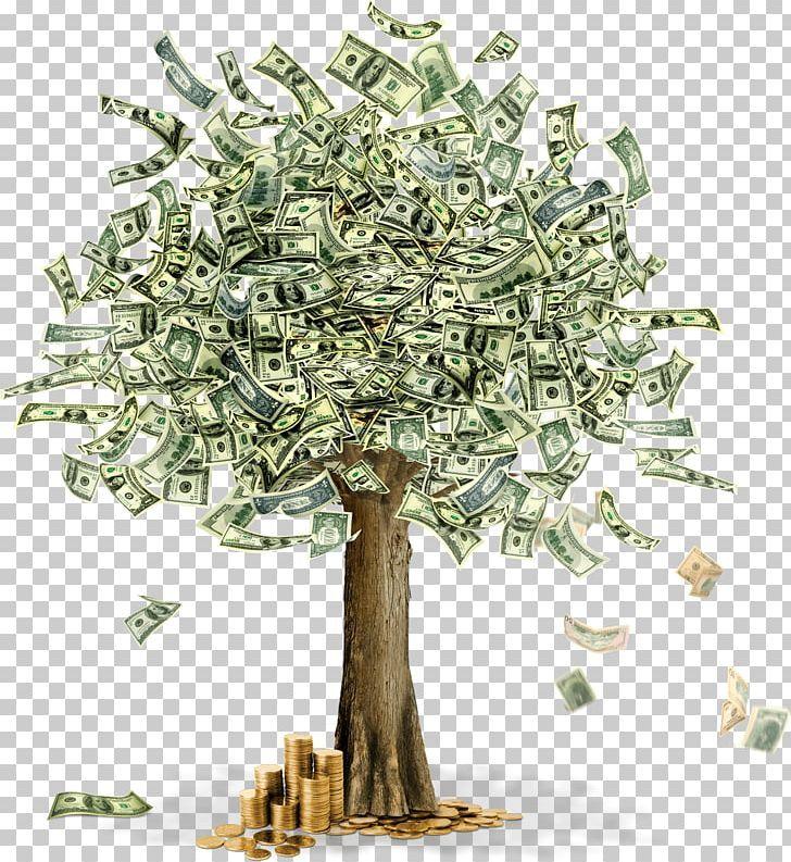 Moneytree Png Australian Dollar Bank Banknote Branch Cash Money Trees Money Images Gold Money Wallpaper