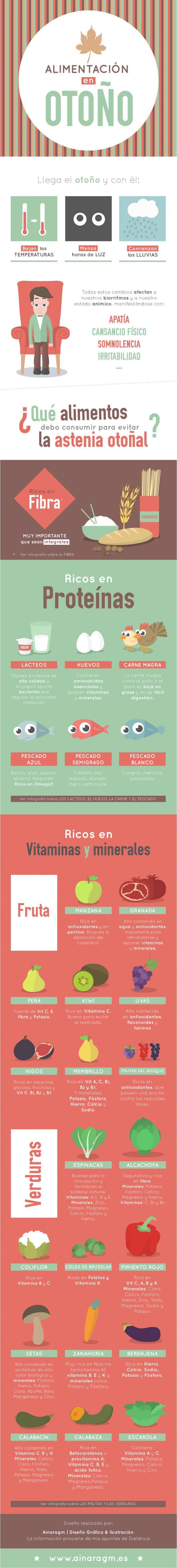 Infografía sobre la alimentación en otoño para evitar la llamada astenia otoñal #infografia #salud #alimentacion #otoño #astenia #diseno #ilustracion