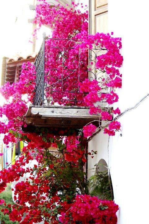 Skiathos , Greece