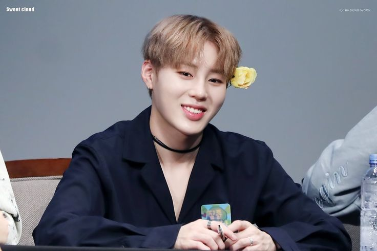 Wanna One Sungwoon