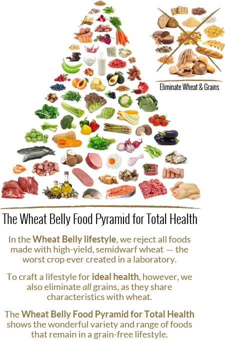 According to the USDA MyPyramid, or the new MyPlate, grains–whole and white–should comprise the largest...
