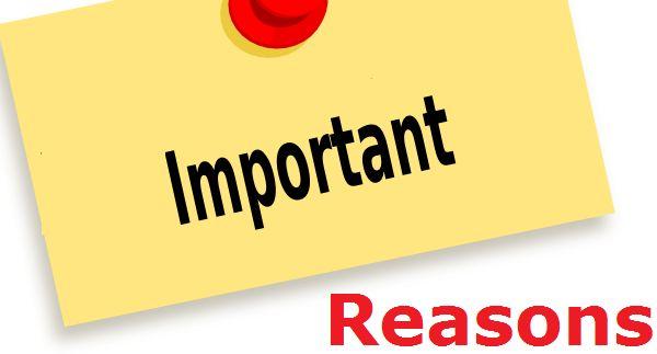 Vital Reasons That Make Instant Cash Loans A Great Financial Solution!  #instantcashloans