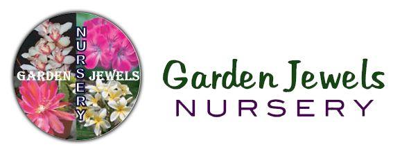 Online Store « Garden Jewels Nursery – San Diego Epiphyllums