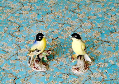 Birdies (Loving Me Loving You Series) 2004