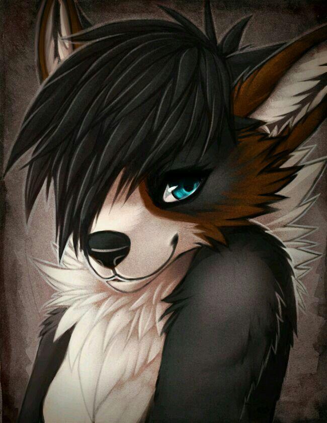 Anthro Arctic Wolf 102 best Anthro / Furr...