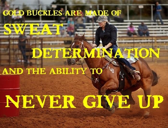 Barrel racing or any showing