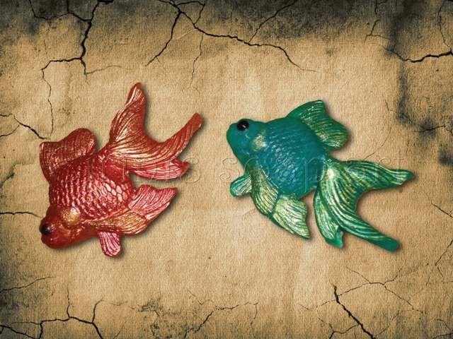 Fish 2 soap