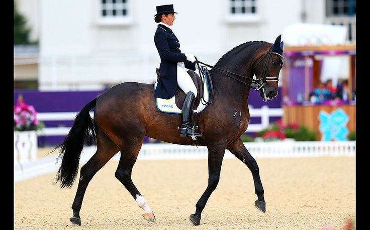 Tinne Vilhelmson Silfven of Sweden riding Don Auriello competes in the Team Dressage Grand Prix Special on Day 11 of the London 2012 Olympic Games