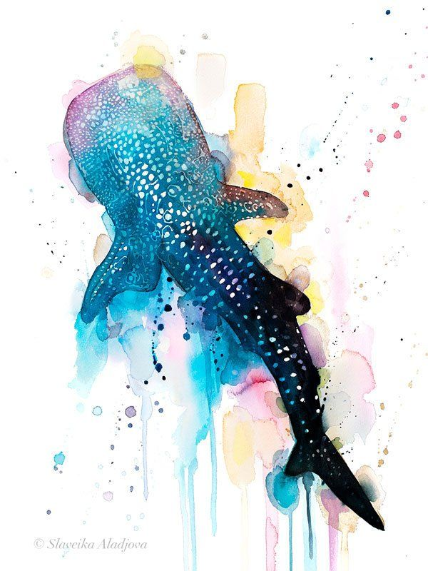 Blue Whale Shark Watercolor Painting Print By Slaveika Aladjova