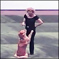 Dog and Owner Perform the Cutest Grease Dance Routine Together - Cute Video