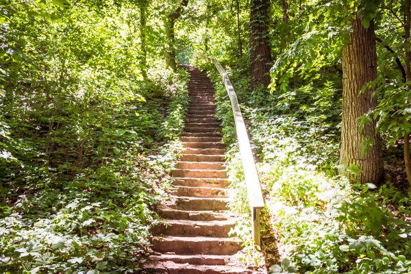 Riverside Park Janesville Wi Riverside Park Ziplining Day Hike