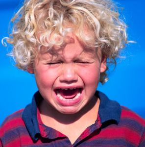 The Makings of a Toddler Tantrum |