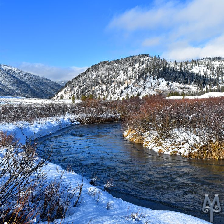 Winter on Fawn Pass, Yellowstone National Park...Click on this image to see its 'Photo Map' and geolocation (Menu Item G53.)