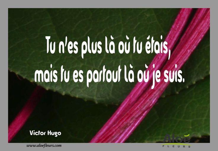 Citation Poème DeuilTu N'es Plus Là Où Tu Étais, Mais Tu Es Partout Là Où Je Suis.