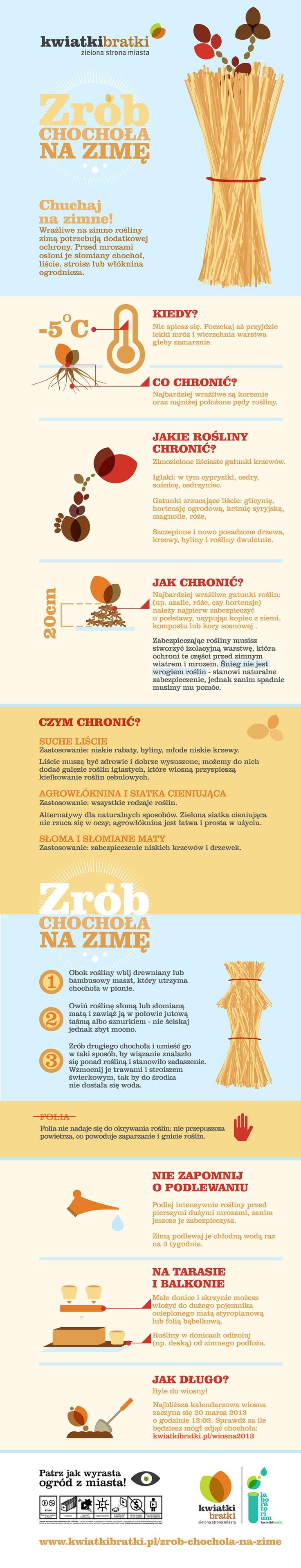 Zrób chochoła na zimę - infografika kwiatkibratki: http://kwiatkibratki.pl/zrob-chochola-na-zime/