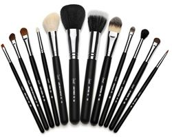 Sigma makeup brushes... just as good as my MAC brushes but half the price...