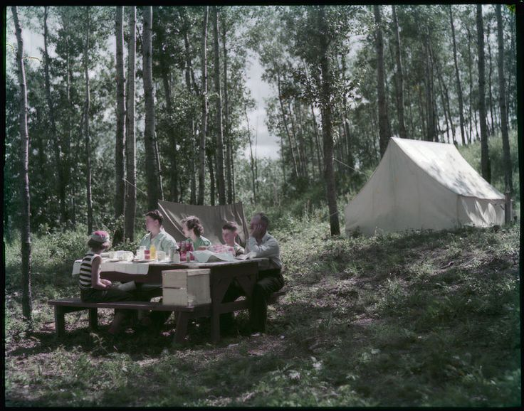 A camp supper in Elk Island National Park, Alberta / Un pique nique au parc national Elk Island, en Alberta | by BiblioArchives / LibraryArchives