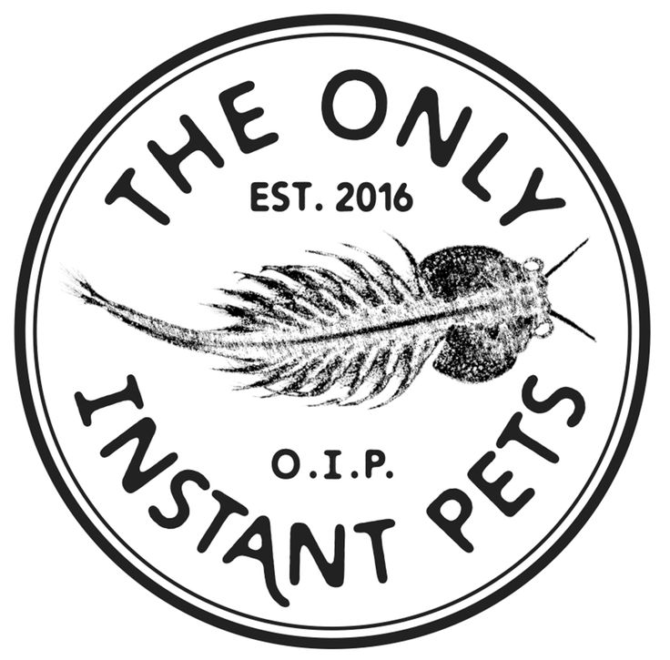 The new logo for OIP Garage Rock Punk Blues