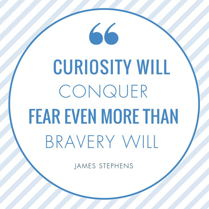 Stay curious and never stop learning.