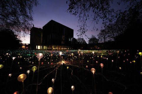 The Field of Light  /  Holburne Museum  /  Bruce Munro