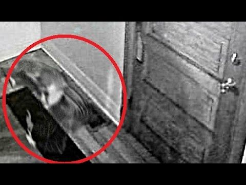 """UNCOVERED - SECURITY CAM GHOST! In this episode of """"Uncovered"""" we receive two photos taken by a Chicago College student. He claims to have captured these scary images on his security camera inside of his Logan Square apartment.  In the first photo you see what appears to be the spirit of a young boy. In the second image, it appears to be a young boy again, except this time it is following the man walking in the photo. Tell us what YOU think!   #IPRAstrong"""