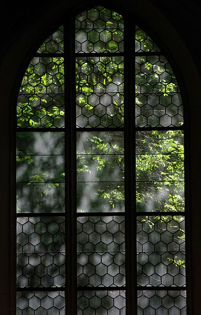Wiosna w krakowskim klasztorze dominikanów. #dominikanie #kraków #klasztor #okno #wiosna #dominicans #cracow #window #spring #priory #blackfriars