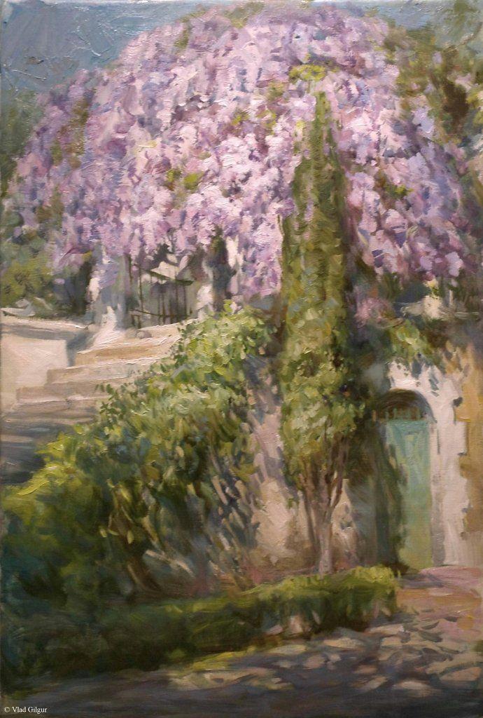 Flowering of Wisteria