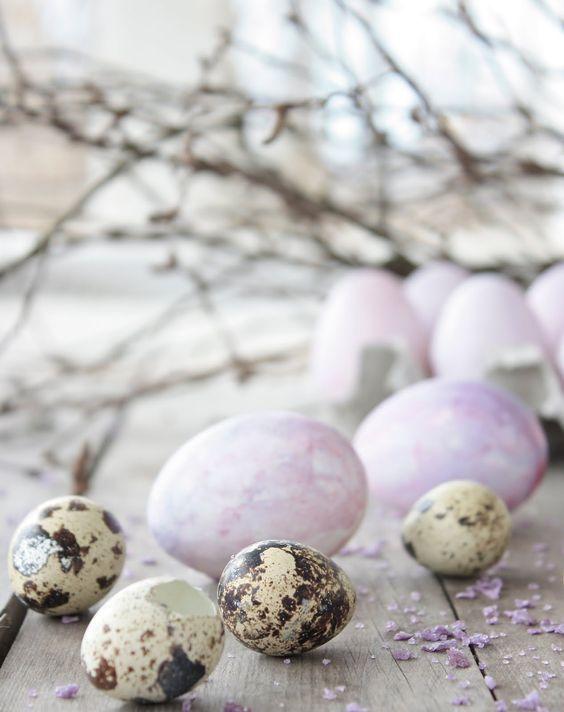 599 besten Spring of Purple Bilder auf Pinterest   Frühling ...